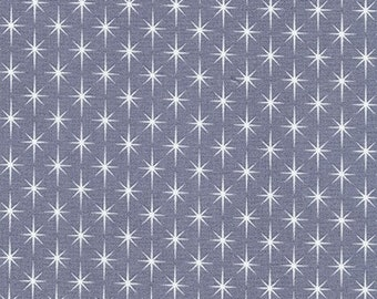 Bewitched Fabric B - Modern Classic by Violet Craft for Robert Kaufman - Slate - AVL-18712-66
