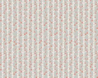 Riley Blake Fabrics - Joey by Deena Rutter - C8493 - Grey (Juvenile)