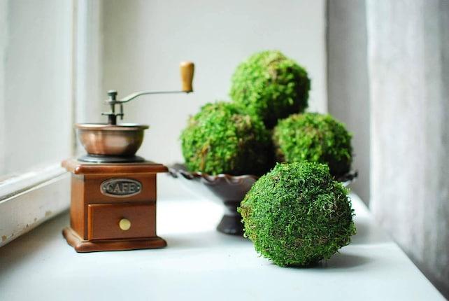 Decorative Moss Balls Simple Natural Moss Balls Set Of 48 Decorative Balls For Bowls Etsy