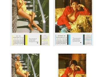 1:25 scale model 1960 Playboy calendars Playmate Pin-UP assortment