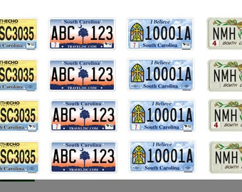 scale model car South Carolina license tag plates