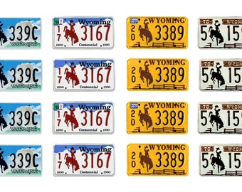scale model car Wyoming license tag plates