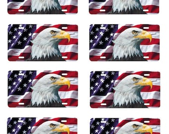scale model US flag and Eagle license tag plates USA United States America