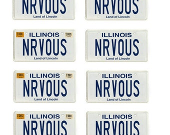 scale model Ferris Bueller's Day Off Ferarri car license tag plates