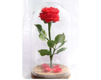 Beautiful Beauty and the Beast Rose,Home Décor,Handmade flowers,Red Roses,cold porcelain,Rose in glass dome,Forever Rose,Home living,Decor
