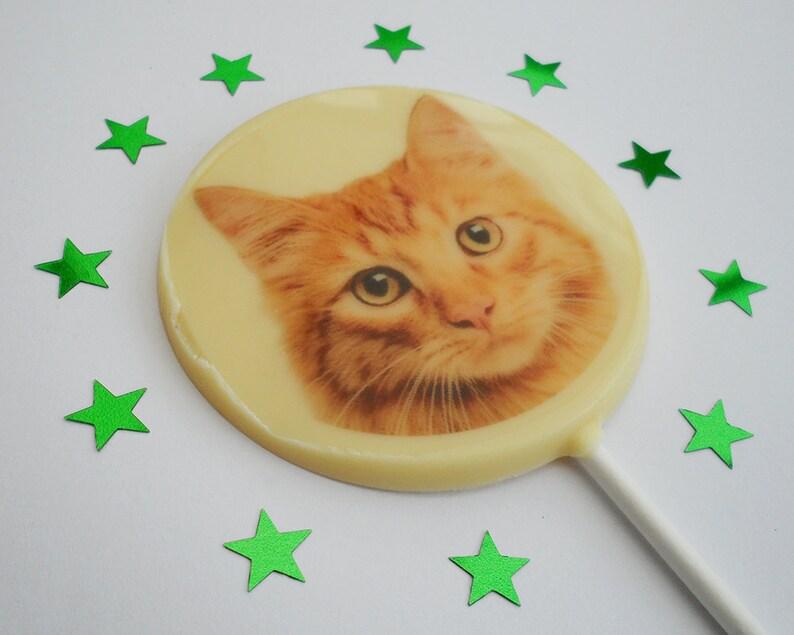 Ginger Cat Gift Cat Lover Gift Cat Owner Gift Ginger Cat image 0