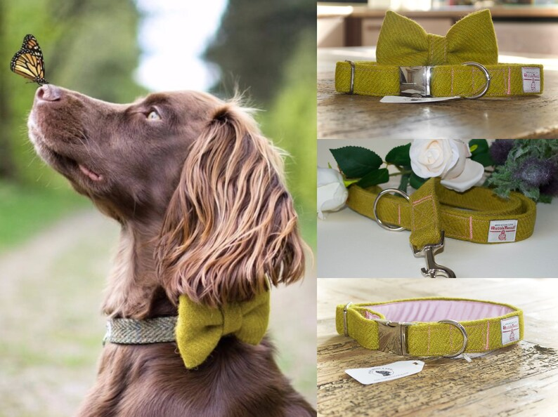 Handmade Harris Tweed Bumble Bee Black Dog Bow Ties For Dogs Tweed Dickie Bow