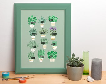 Kitchen herbs poster illustrated plants rosemary thyme basil lavender dill 30x40 cm 12x16 inch - design by Heleen van den Thillart