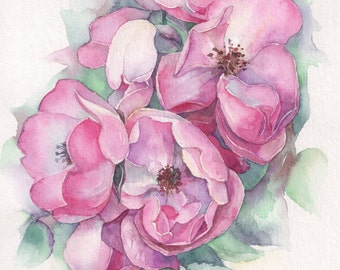 Pink Roses, Original watercolor
