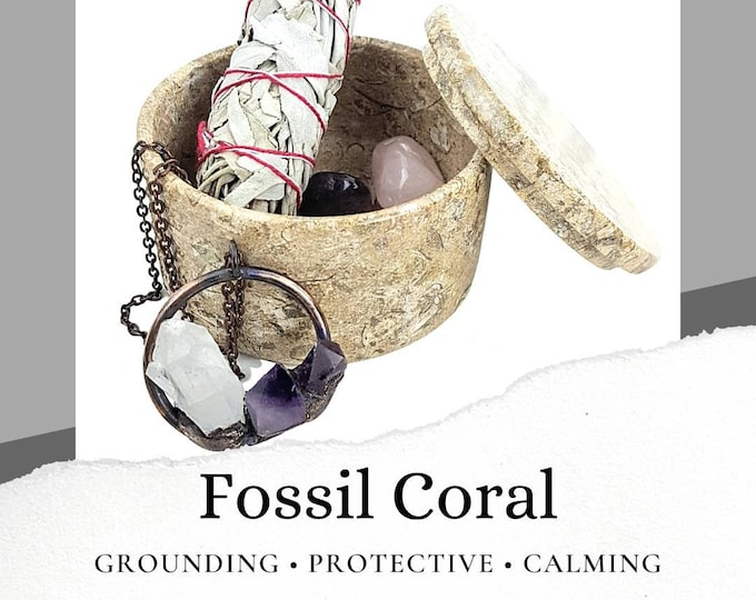 Fossil Coral Jewelry Box