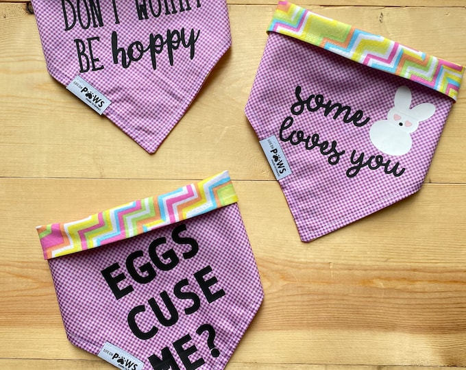Eggcelent Easter Reversible Bandana
