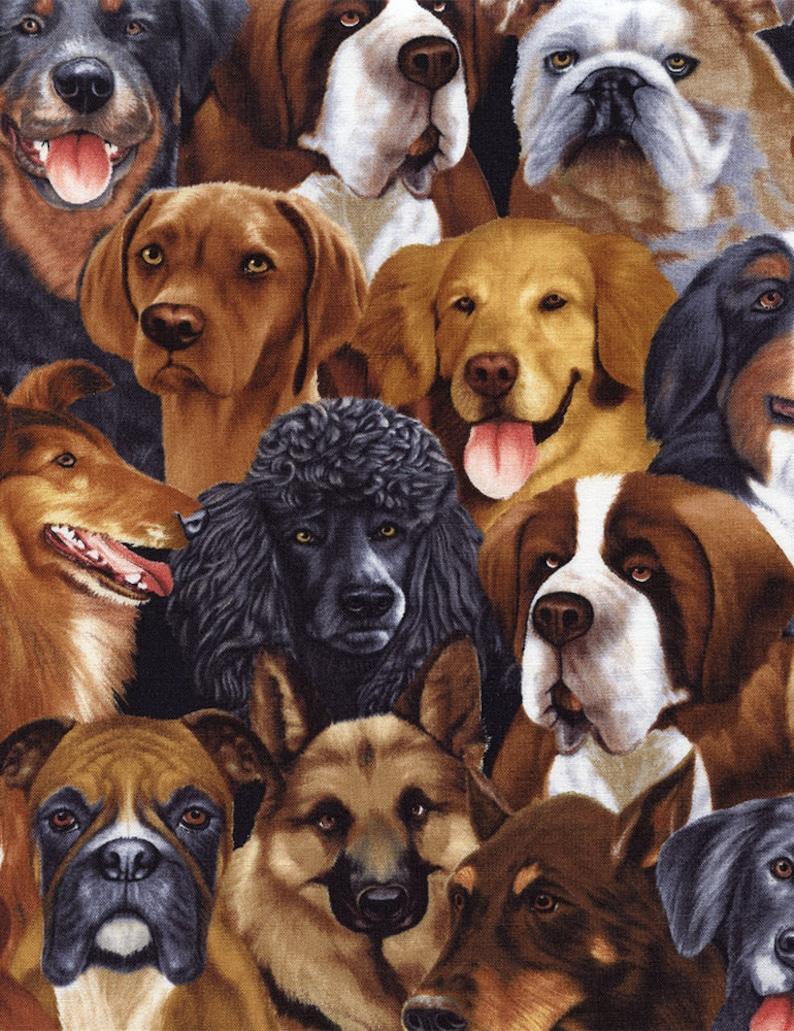 Dog Breeds in General  Custom Made Scrub Tops Nursing image 0