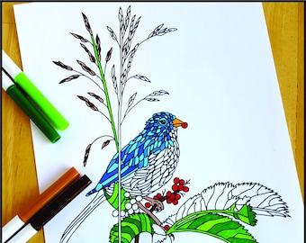 Coloring Page, Bird Eating Berries, Printable