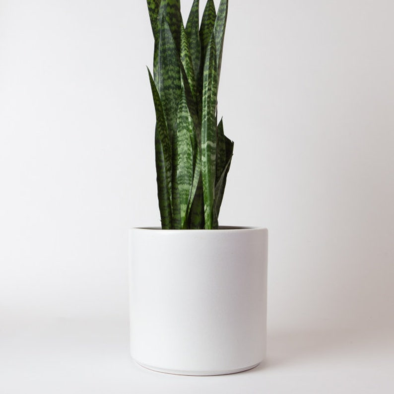 30 Off Planter Seconds Matte White Ceramic Cylinder Planter Etsy