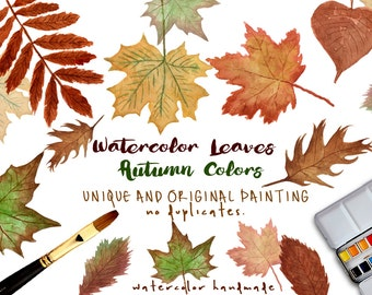 Watercolor LEAVES AUTUMN Colors Clip Art Collection - Hand made Illustrations pack of for instant download to download a digital file, leaf