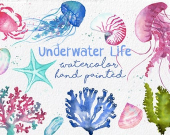 Watercolor Underwater ClipArt Set.Marine life hand painted,under the sea,jellyfish,corals,algae,shell,starfish,instant download digital file