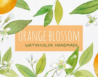 Watercolor Palm Leaves Hand Painted ClipArt Collection - Tropical Illustrations for instant download, green leaf, tropical style, clip art