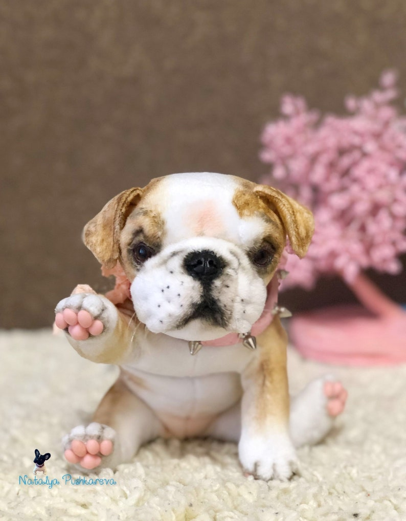 English Bulldog puppy/dog 7,9 in (20 cm) realistic toy MADE TO ORDER