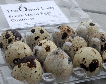 Fresh Quail Eggs by the Dozen