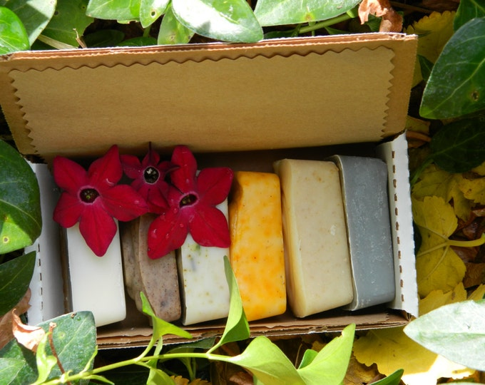 All Natural Soap Sampler, set of 6, spa gift made with essential oils and botanicals