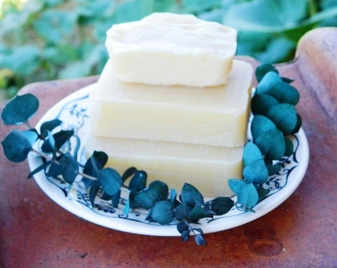 Eucalyptus Mint with Aloe Soap All Natural Soap scented with essential oils
