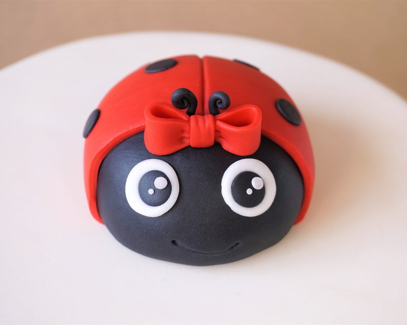 Fondant ladybug cake topper for girl first birthday party image 0