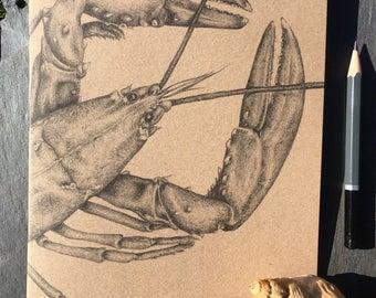 A5 kraft notebook lobster pencil drawing