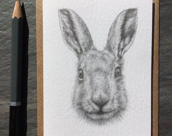 Hare pencil drawing mini greeting cards 4 pack