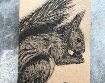 A5 kraft notebook red squirrel pencil drawing