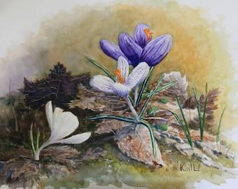 Crocus Flower Watercolor Painting, Spring Flowers, Early Bloomers, Watercolor Wall Art - Print