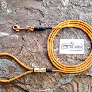 Goldenrod Paracord Dog Leash