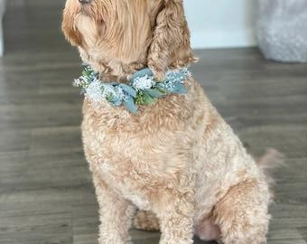 Seeded Silk Eucalyptus Wedding Dog Collar ;Wedding Dog Canine Floral Adornment Flower Crown for Dogs