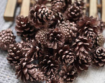 Small Rose gold Dried Pine cones, Pine cone, Christmas supplies