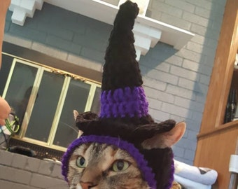 Witch Cat Hat