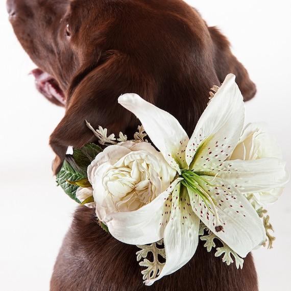 Lilie Hochzeit Hundehalsband Hund Blume Krone Blume Etsy