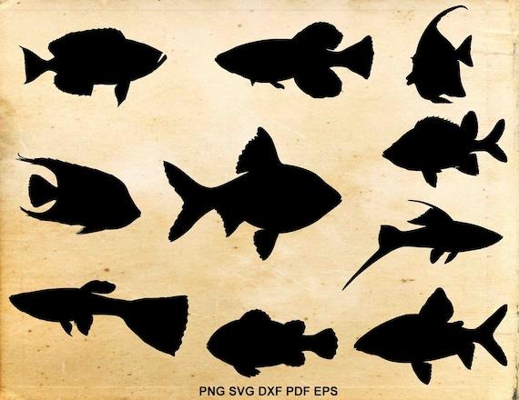 Tropical Fish Clipart Cut Files For Silhouette Tropical Fish Silhouettte SVG Files for Cricut Eps, Dxf Aquarium Fish SVG Png