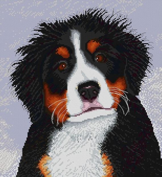 Fuzzy Head Berner Puppy Cross Stitch Pattern Chart Cute Etsy