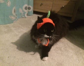 Pumpkin cat hat