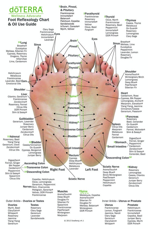 10 Pack Mini Essential Oil Reflexology Chart Oil Use Guide Etsy