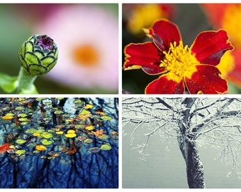 SET 0f FOUR: F0UR SEAS0NS fine art PRINTS, spring, summer, autumn, winter, seasonal photos, monochromejunkie, fine art photography, collage