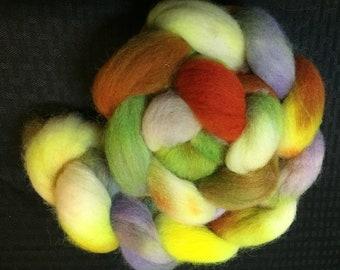 Hocus Pocus 4 oz Cheviot wool Combed Top
