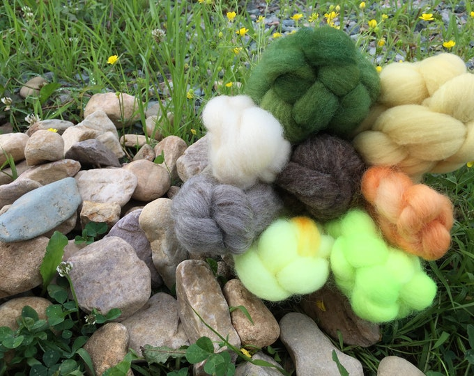 Sunflower - Breed Study With a TWIST - Spinning Fiber - 4 oz