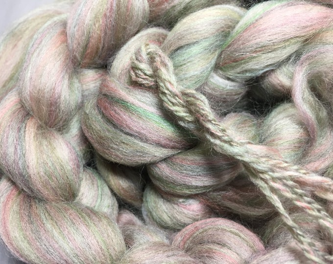 Rose and Thyme Multi Colored Merino/Corriedale Spinning Fiber - Exclusive!
