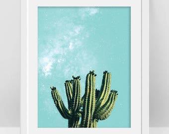 Cactus Poster, Cactus and Succulent Wall Art, Desert Cactus Print, Succulent Plant Art, Arizona Cactus Photo, Cacti Plant, Botanical Print