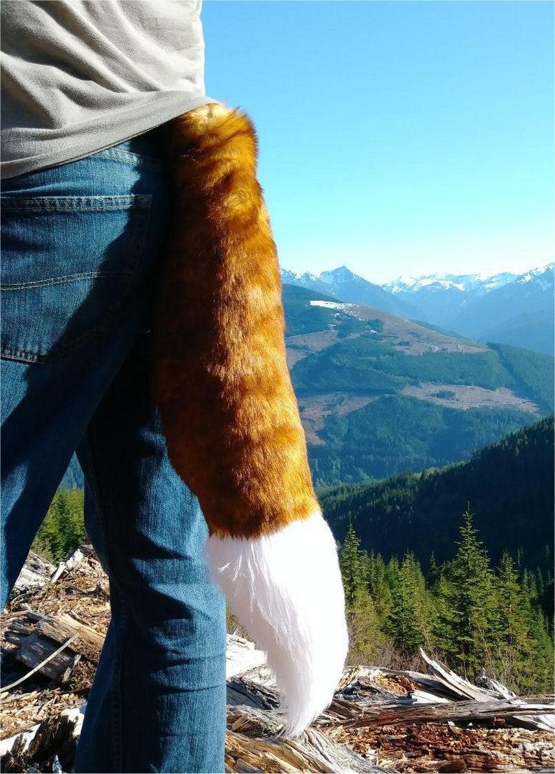 Ruddy fox Fox tail