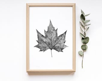 Leaf Photography Print Digital Download| Botanical Printable Wall Art| Rustic Home Decor| Minimalist Botanical Print| Boho Farmhouse Decor