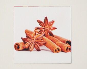 Anise Cinnamon Magnet