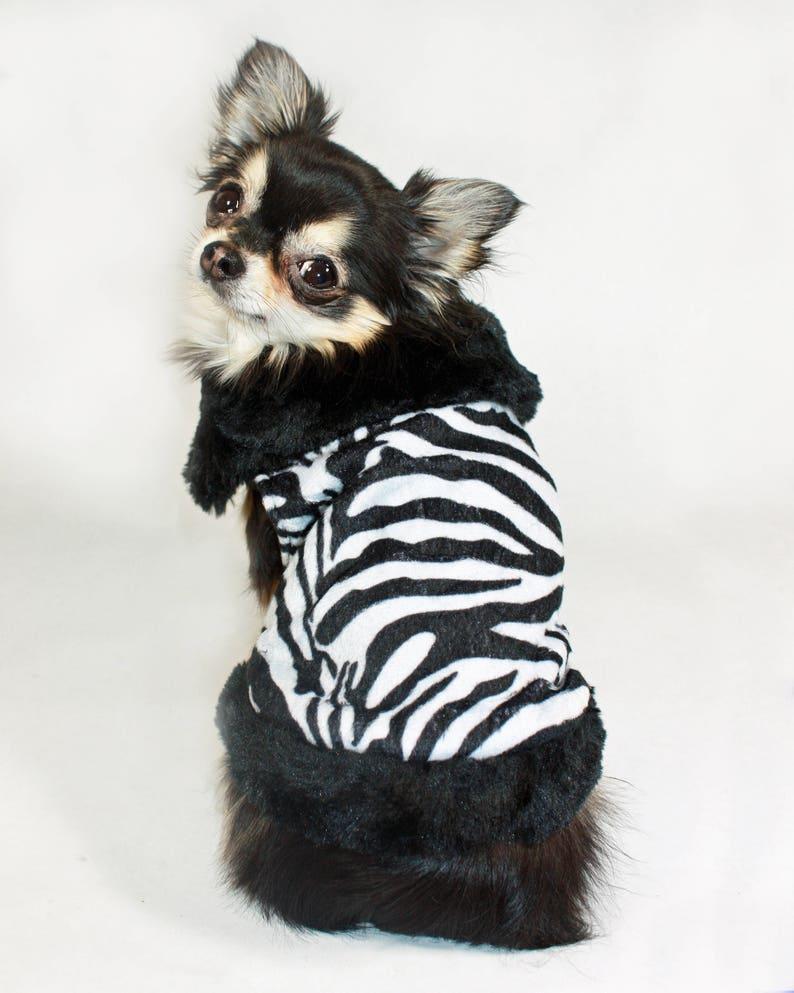 Zebra Dog Coat