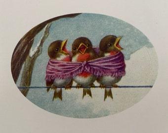 Vintage Birds Stickers, Birthday Stickers, Teacher, Diary, Family, Calendar sticker, Children, Book, Blue Bird, Christmas, stationery