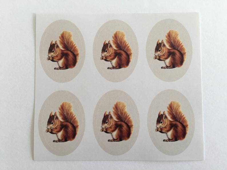Vintage Squirrel Stickers Birthday Stickers Teacher image 0